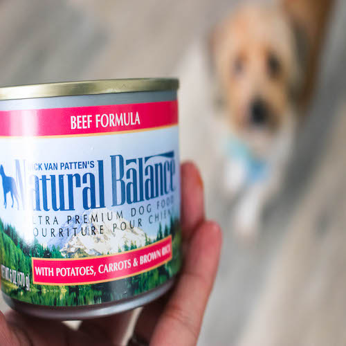 natural balance dog food