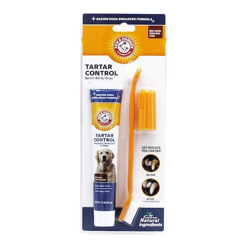 Arm & Hammer dog toothpaste