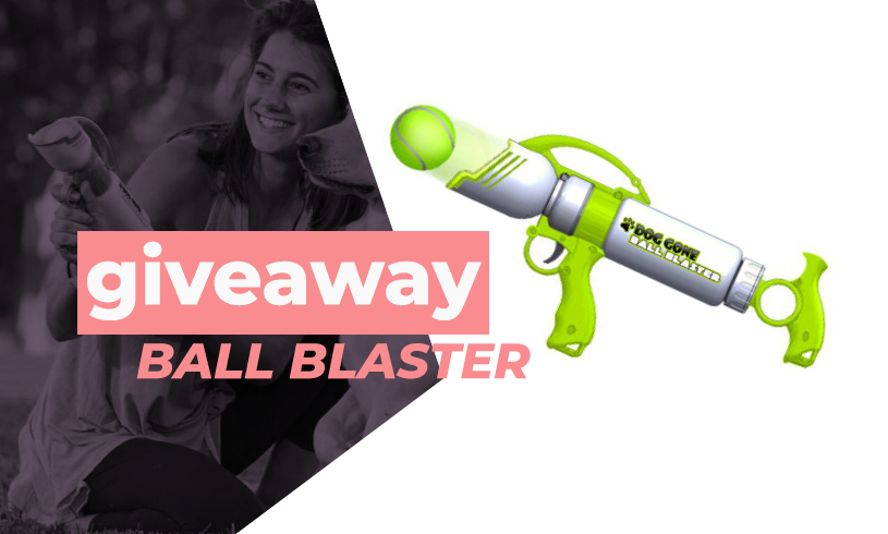 dog ball blaster giveaway