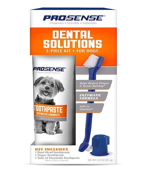 prosense dog toothpaste