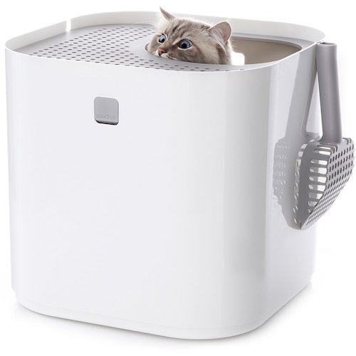 Modkat self-cleaning Litter Box