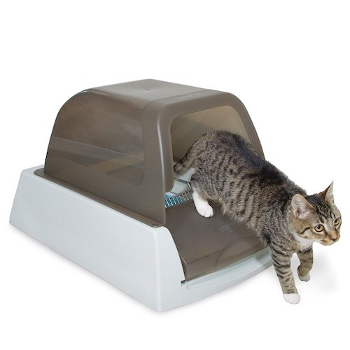 petsafe self-cleaning litter box