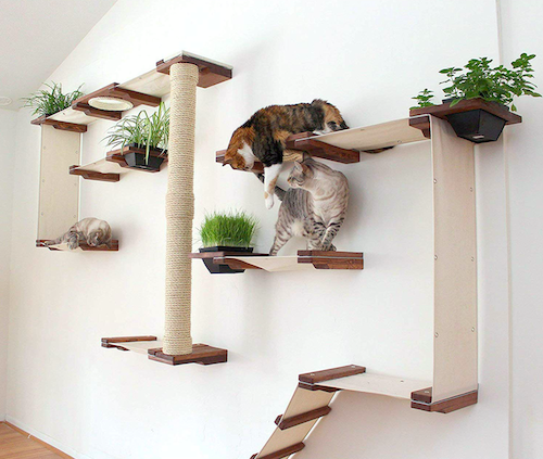 large fancy cat condo