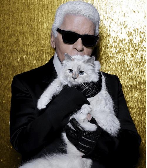 Choupette Lagerfeld famous cat