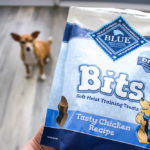 blue buffalo dog treats