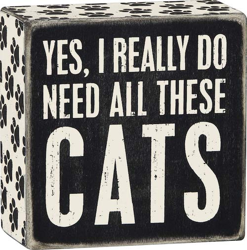 funny cat sign