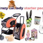 crazy cat lady starter pack