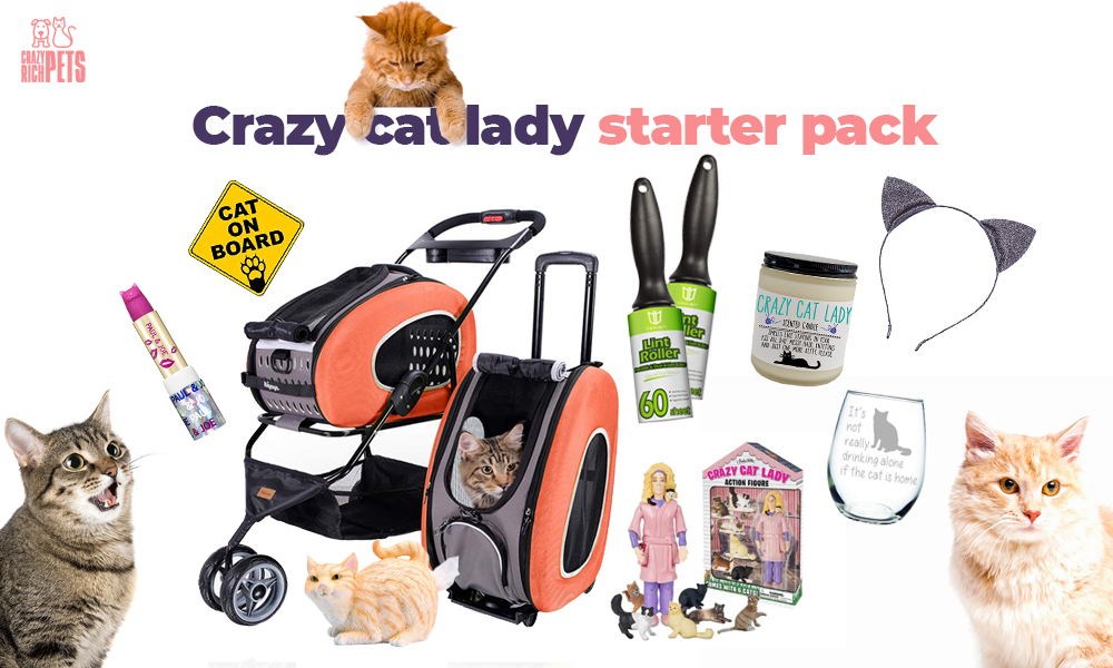 crazy cat lady starter pack